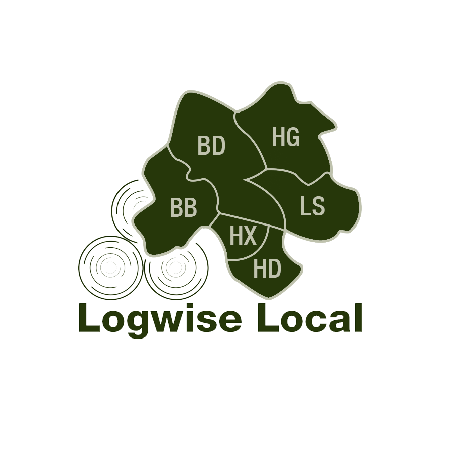 Logwise Local icon