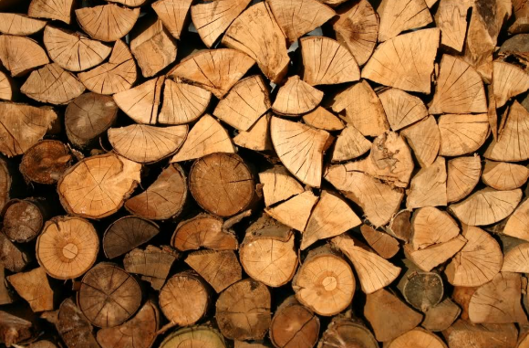legal logs